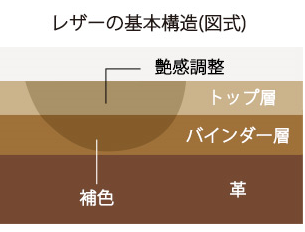 レザーの基本構造