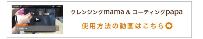 msg_papamama_shiyou02