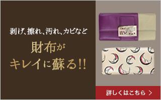 sp_bn_wallet