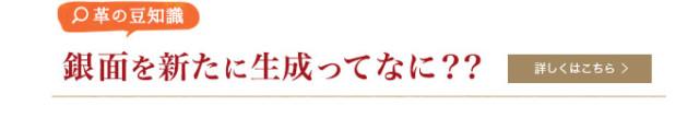 mamechishiki1_bn